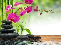 Relaxing_spa-wallpaper-10032652-spotlisting